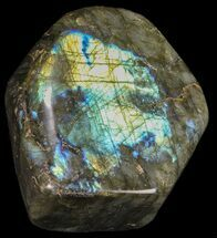 "Buy 3.9"" Tall, Flashy Polished Free Form Labradorite - #54922"