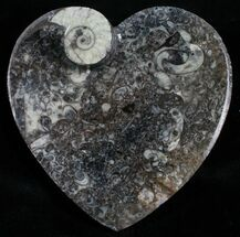 Buy Heart Shaped Fossil Goniatite Dish - #4951