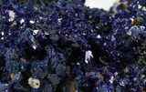 "2.2"" Sparkling Azurite Crystal Cluster - Laos - #56057-1"