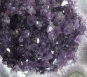 "8.6"" Purple Amethyst Geode with Calcite - Uruguay - #57194-2"