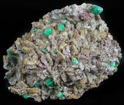 Malachite, Selenite & Dolomite - Fossils For Sale - #57366
