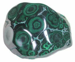 "Buy 3"" Polished Malachite - Congo - #58207"