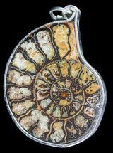 Moroccan Ammonite Fossil Pendant  For Sale, #58361