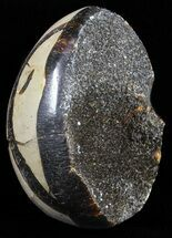 "2.3"" Septarian ""Dragon Egg"" Geode - Black Crystals For Sale, #58790"