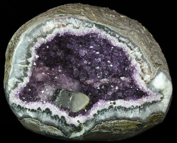"10"" Beautiful Amethyst Crystal Geode with Calcite - Uruguay"
