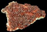 "Huge Plate Of Ruby Red Vanadinite Crystals - 9.5"" Wide - #59958-1"