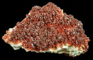 Vanadinite on Barite - Fossils For Sale - #59958