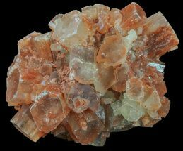 Aragonite - Fossils For Sale - #59796