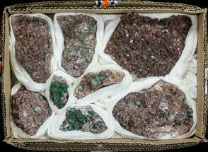Malachite on Dolomite Wholesale Lot - 8 Specimens For Sale, #59945