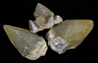 Calcite - Fossils For Sale - #60036