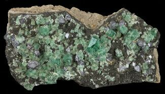 "3.5"" Fluorite & Galena Cluster -  Rogerley Mine For Sale, #60365"
