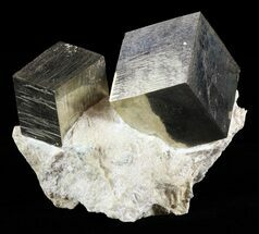 Two Pyrite Cubes In Matrix - Navajun, Spain For Sale, #60770