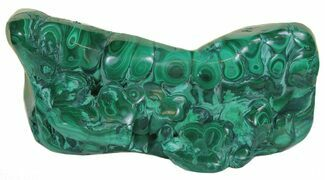 Malachite - Fossils For Sale - #60873