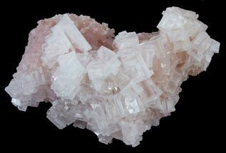 "4.4"" Pink Halite Crystal Plate - Trona, California For Sale, #61058"