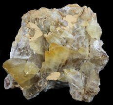 "Buy 7.5"" Dogtooth Calcite Crystal Cluster - Morocco - #61234"