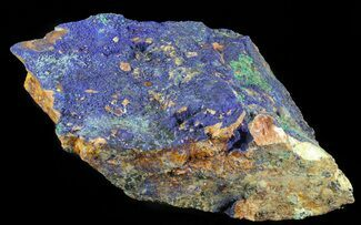 "Buy 13.5"" Large Malachite with Azurite Specimen (48 lbs) - Morocco - #61165"