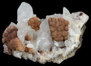"Buy 2"" Siderite and Calcite Association - Colorado - #61783"