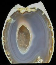 Agate - Fossils For Sale - #61878