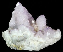 Quartz var Amethyst - Fossils For Sale - #62961