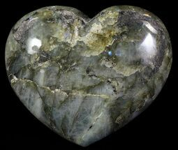 Labradorite - Fossils For Sale - #62958