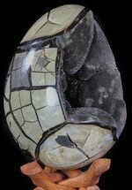 "Huge, 9.9"" Septarian ""Dragon Egg"" Geode - Crystal Filled For Sale, #63137"