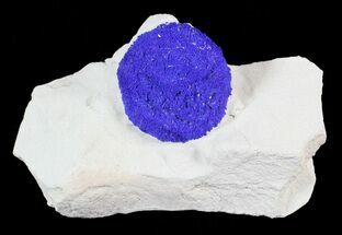 ".9"" Brilliant Blue Azurite Sun On Kaolinitic Siltstone - Australia For Sale, #63236"