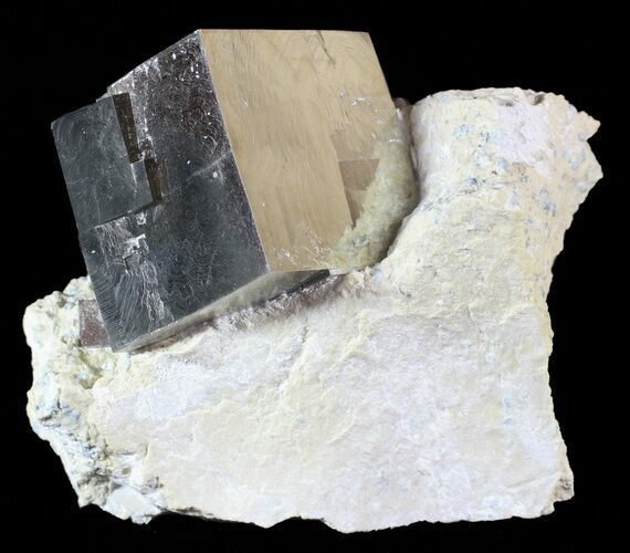 "1.4"" Brilliant, Natural Pyrite Cube In Matrix - Navajun, Spain"