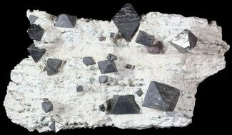 "Buy 4"" Octahedral Magnetite Crystals - Australia - #63328"
