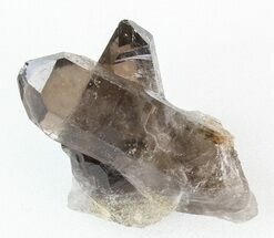 Quartz var Smoky - Fossils For Sale - #42039
