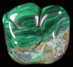 Malachite - Fossils For Sale - #63750