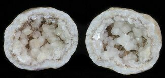 Calcite & Pyrite  - Fossils For Sale - #62265