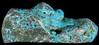 "Buy 6.4"" Polished Malachite and Chrysocolla - Congo - #64648"