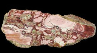 "11.3"" Polished Brecciated Pink Opal - Western Australia For Sale, #64784"