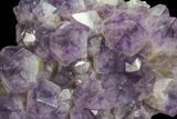 "22"" Amethyst Cluster (108 lbs) - Massive Points - #65011-6"