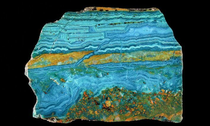 "2.6"" Polished Chrysocolla & Plume Malachite - Bagdad Mine, Arizona"