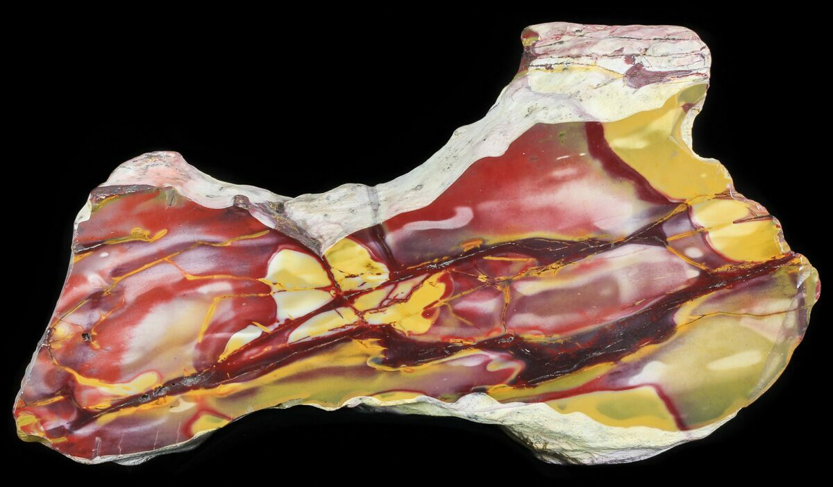 "11.6"" Polished Mookaite Jasper Section - Australia"