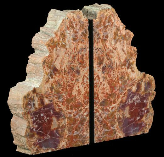 "9.5"" Tall, Colorful, Arizona Petrified Wood Bookends"