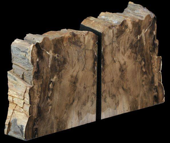 "5.6"" Petrified Wood Bookends - Oregon"