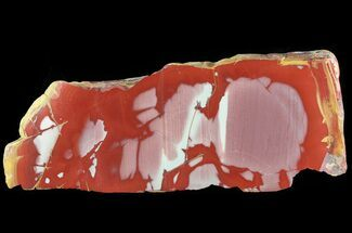 "Buy Bargain, 5.5"" Polished Noreena Jasper Slab - Australia - #65971"
