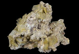 Barite - Fossils For Sale - #64128