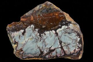 "Buy 5.4"" Polished Outback Jasper - Western Australia - #65653"