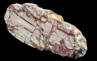 "Buy 8.4"" Polished Brecciated Pink Opal - Western Australia - #65419"