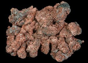 Copper - Fossils For Sale - #65937