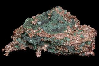 Copper - Fossils For Sale - #65928
