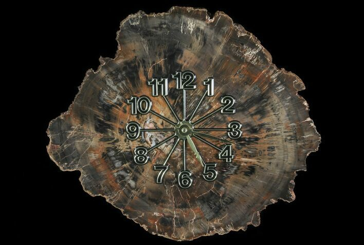 "11.7"" Wide Arizona Petrified Wood Clock"