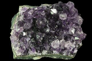 "Buy 2.7"" Purple Amethyst Cluster - Uruguay - #66754"
