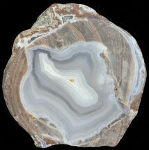 "Buy 2.5"" Dugway Geode (Polished Half) - #67492"