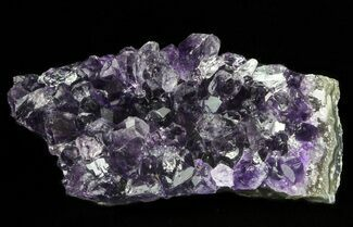 "Buy 2.7"" Purple Amethyst Cluster - Uruguay - #66766"