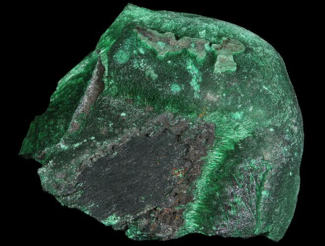 "1.3"" Fibrous Malachite Formation - Congo"