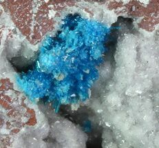 Vibrant Blue Cavansite Clusters on Stilbite - India For Sale, #67796